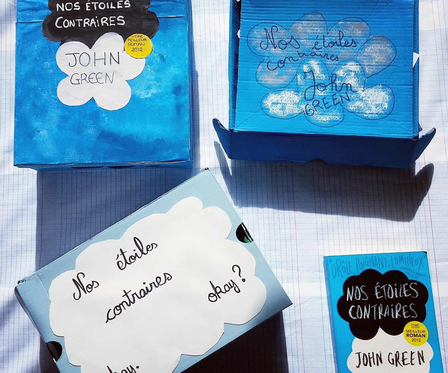 the fault in our stars-DIY-book box-boite-lecture-compte-rendu