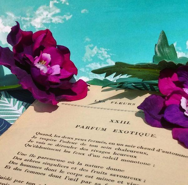 Parfum Exotique La Bande à Baudelaire