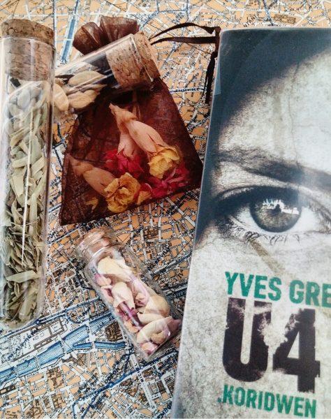 U4 Koridwen Yves Grevet saga jeunesse