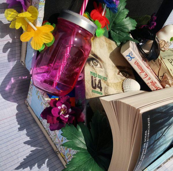 la valise de l'été littérature jeunesse lectures pax et le petit soldat star trip éric senabre u4 yves grevet
