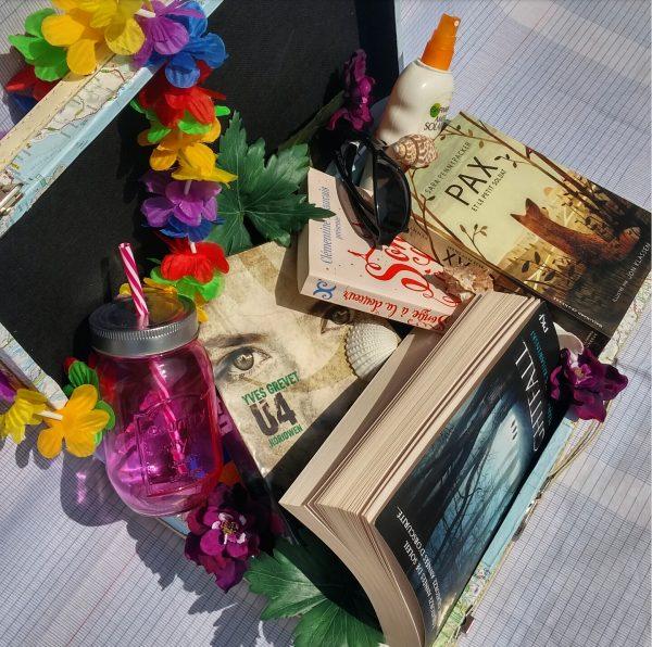 la valise de l'été littérature jeunesse lectures pax et le petit soldat star trip éric senabre u4 yves grevet nightfall