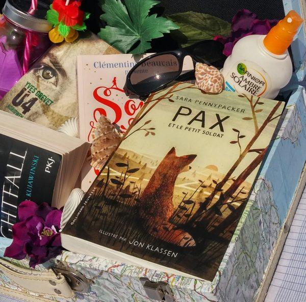 la valise de l'été littérature jeunesse lectures pax et le petit soldat