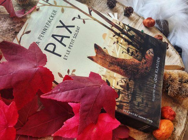 Pax et le petit soldat Sara Pennypacker roman littérature jeunesse Jon Klassen édition gallimard guerre amitié illustrations enfance avis critique Peter