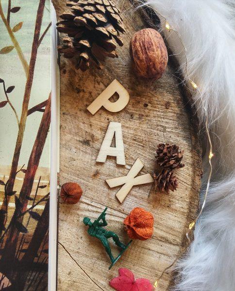 Pax et le petit soldat Sara Pennypacker roman littérature jeunesse Jon Klassen édition gallimard guerre amitié illustrations enfance