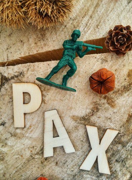 Pax et le petit soldat Sara Pennypacker roman jeunesse Jon Klassen édition gallimard