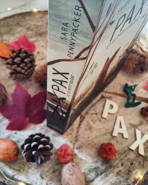 Pax et le petit soldat Sara Pennypacker renard roman jeunesse Jon Klassen gallimard