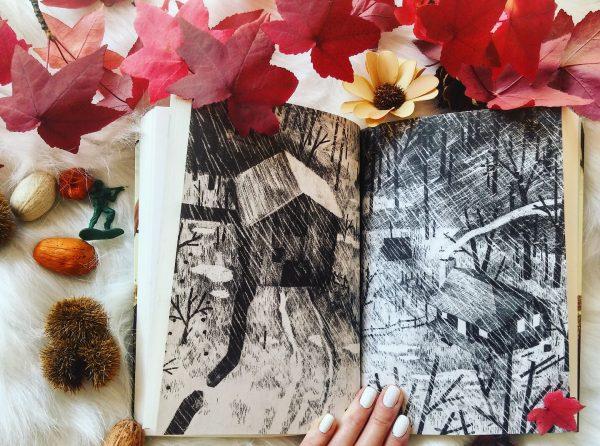 Pax et le petit soldat Sara Pennypacker roman littérature jeunesse Jon Klassen édition gallimard guerre amitié illustrations