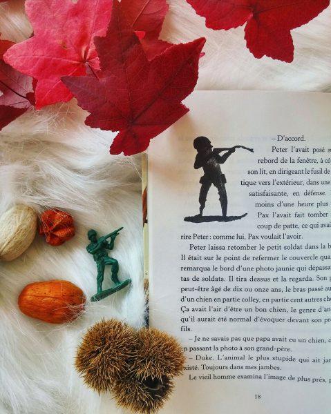 Pax et le petit soldat Sara Pennypacker roman jeunesse