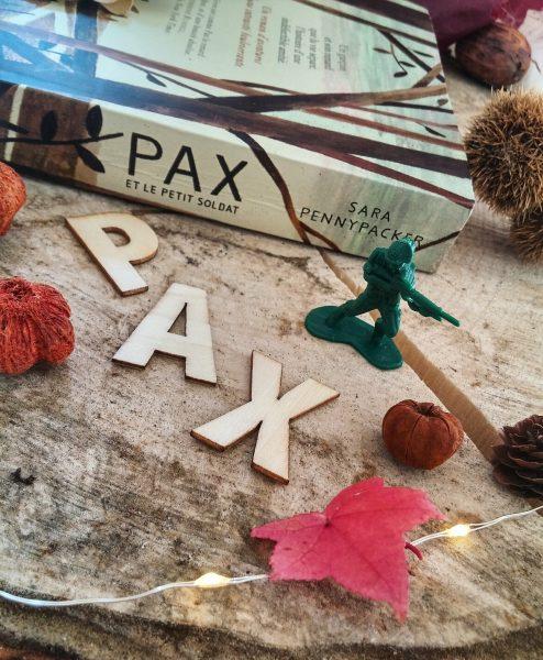 Pax et le petit soldat Sara Pennypacker roman littérature jeunesse Jon Klassen édition gallimard guerre