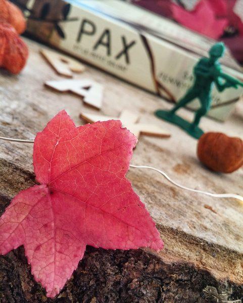 Pax et le petit soldat Sara Pennypacker roman littérature jeunesse Jon Klassen édition gallimard