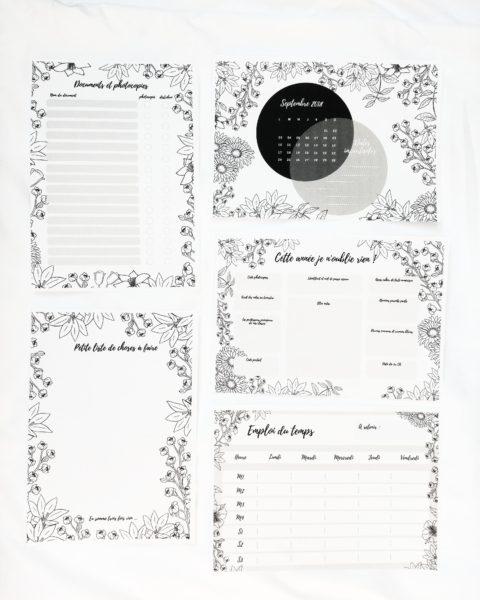 kit de rentrée printable document prof gratuit à télécharger professeur pré-rentrée emploi du temps la bande à baudelaire