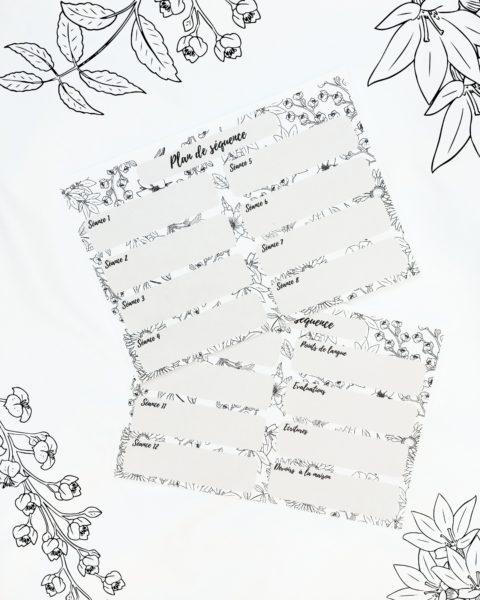 plan de séquence printable document prof gratuit à télécharger professeur kit de rentrée la bande à baudelaire