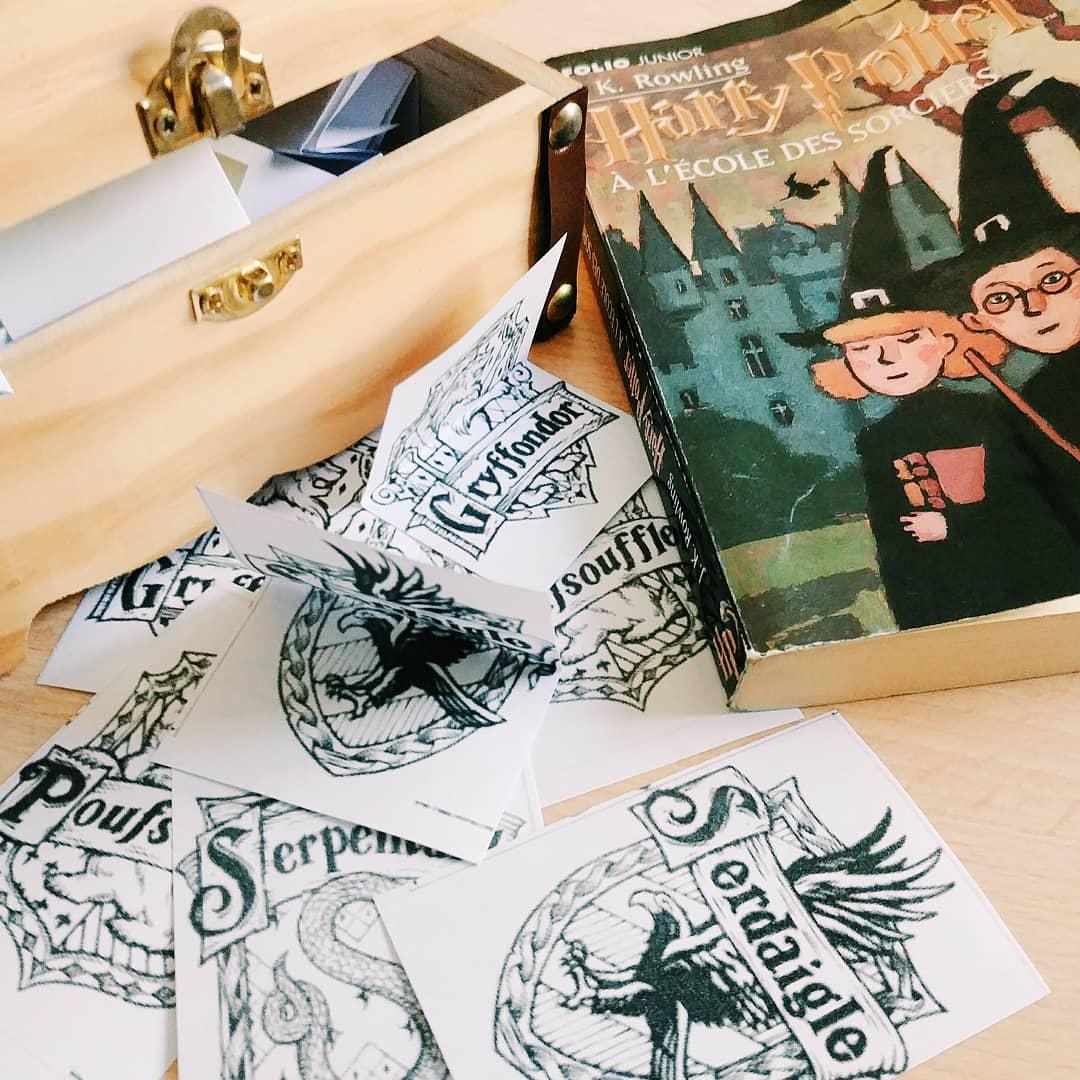 Harry Potter à l'école des sorciers cours cinquième 5eme collège
