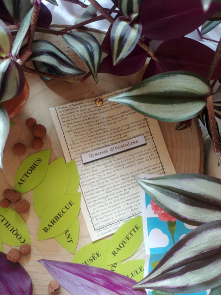 écrivain en herbe, graines d'histoire