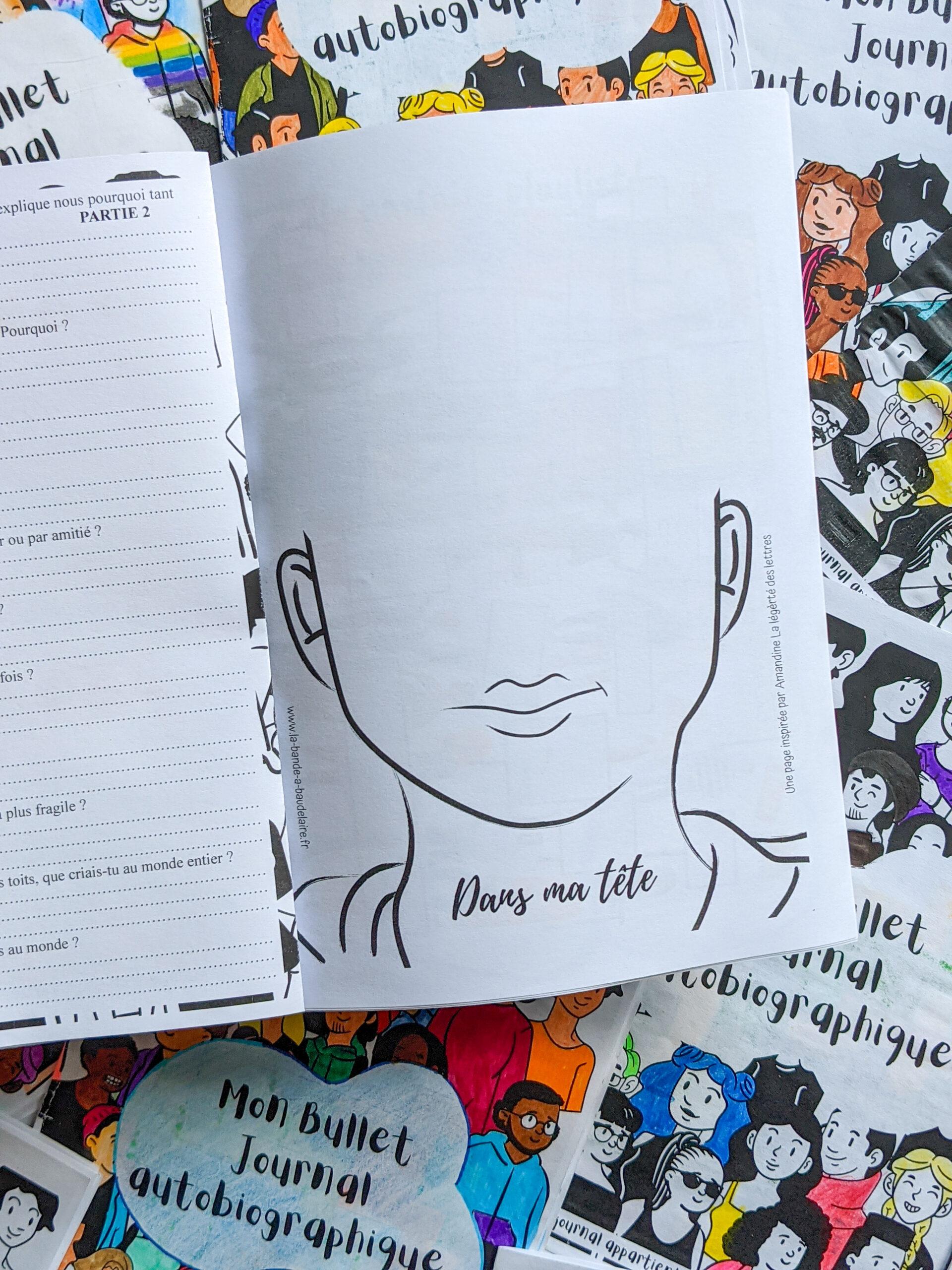 bullet journal autobiographique La bande a baudelaire autobiographie 3eme se raconter